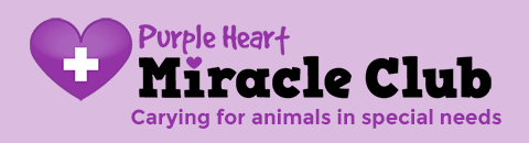 Learn more about our Miracle Club