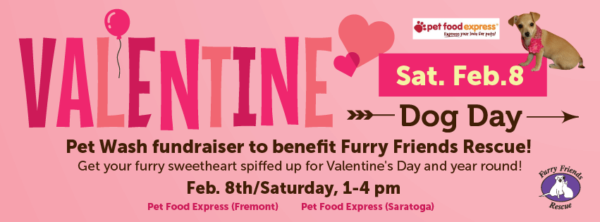Valentine Dog Day, Saturday, Feb. 8th, 2020