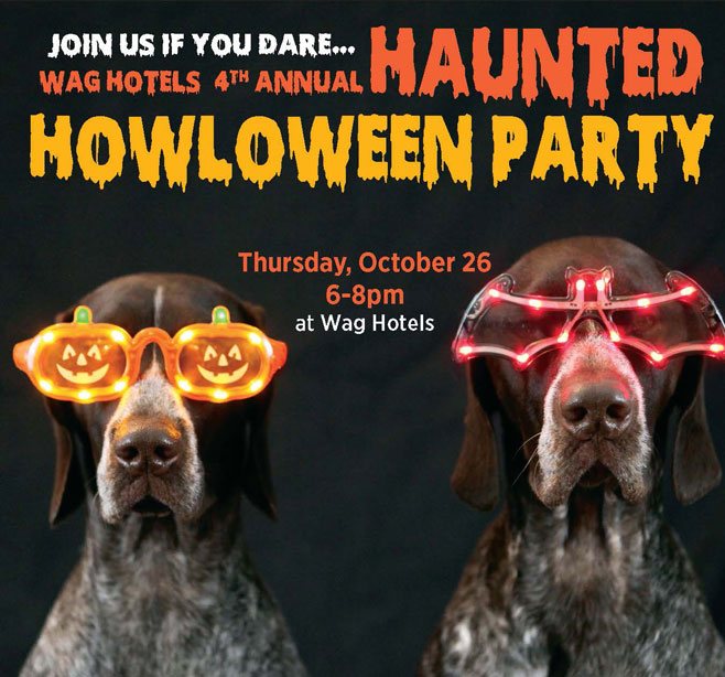 4th annual spooky Haunted Howl-o-ween Party at Wag Hotel Redwood City